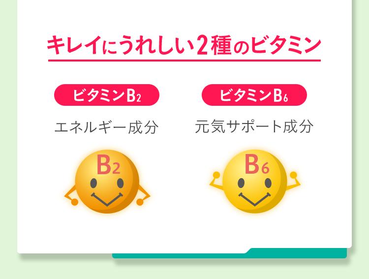 キレイにうれしい2種のビタミン ビタミンB2:エネルギー成分 ビタミンB6:元気サポート成分