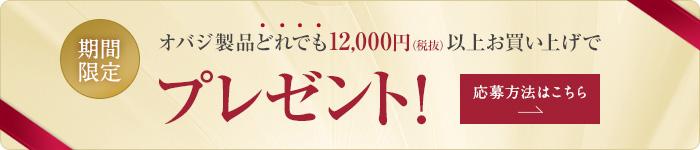期間限定 オバジ製品どれでも12,000円(税抜)以上お買い上げでプレゼント!応募方法 ページへ